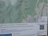 Wilingen-20140705-110930-183.jpg