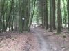 Wilingen-20140705-114355-075.JPG