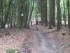 Wilingen-20140705-114359-076.JPG